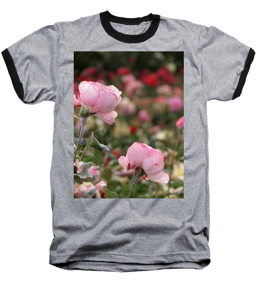 Baseball T-Shirt featuring the photograph Pink Roses by Laurel Powell
