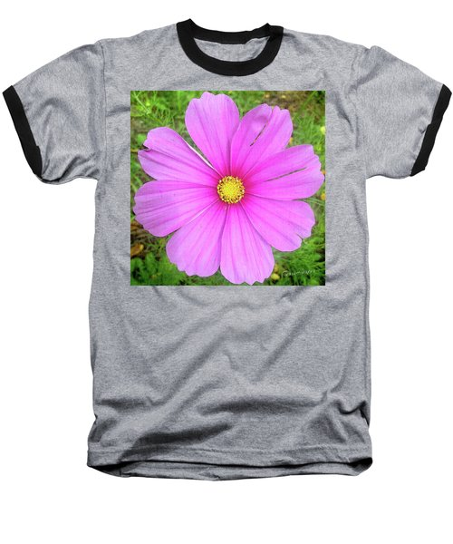Baseball T-Shirt featuring the photograph Pink by Terri Harper