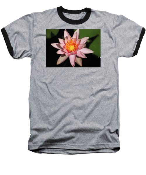 Pink Water Lily 2016 Baseball T-Shirt by Suzanne Gaff