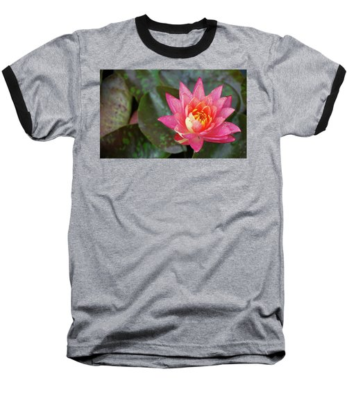 Pink Water Lily Beauty Baseball T-Shirt