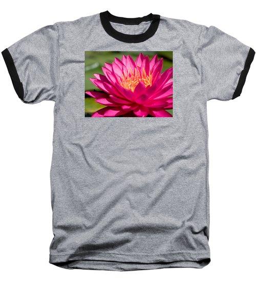 Pink Waterlily Baseball T-Shirt