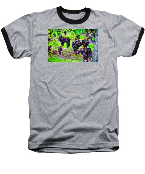 Baseball T-Shirt featuring the photograph Pinot Noir Grapes by Rick Bragan