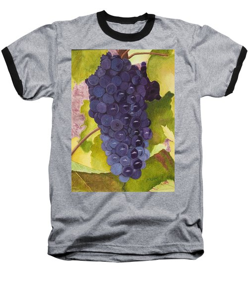 Pinot Noir Ready For Harvest Baseball T-Shirt by Mike Robles