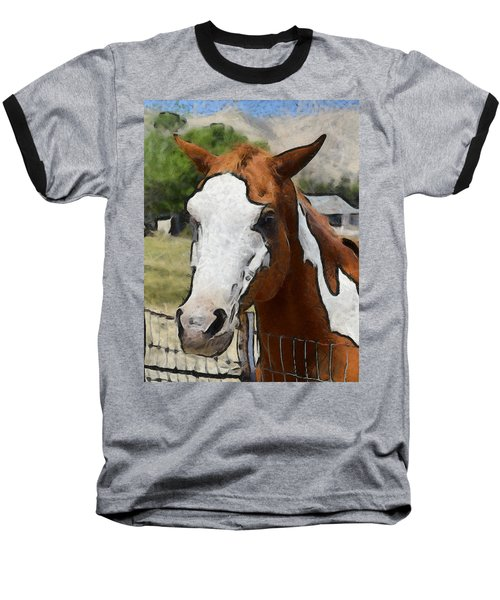 Baseball T-Shirt featuring the photograph Pinto In The Pasture Portrait  by Barbara Snyder