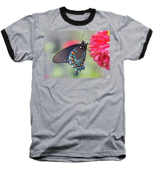 Pipevine Swallowtail Butterfly Baseball T-Shirt