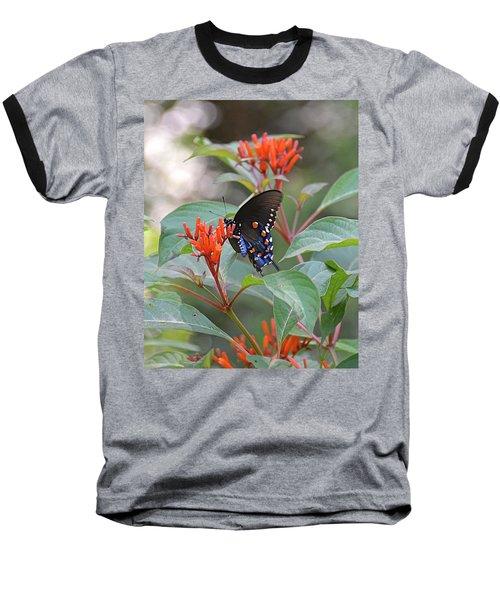 Pipevine Swallowtail Butterfly On Firebush Baseball T-Shirt