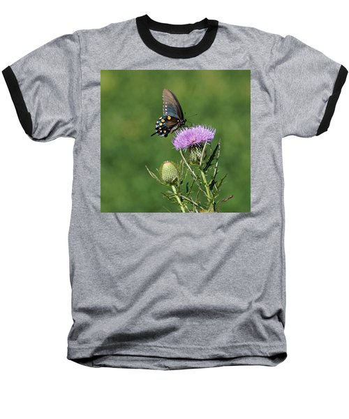 Baseball T-Shirt featuring the photograph Pipevine Swallowtail by Sandy Keeton