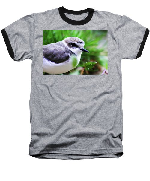 Baseball T-Shirt featuring the photograph Piping Plover by Anthony Jones