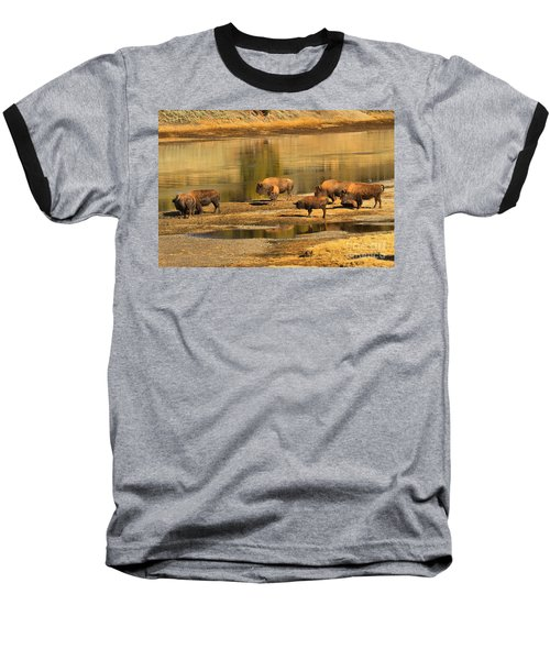 Baseball T-Shirt featuring the photograph Planning To Cross by Adam Jewell