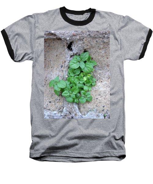 Plant In Stone Naples Italy Baseball T-Shirt