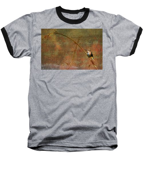 Plate 225 - Hummingbird Grunge Series Baseball T-Shirt
