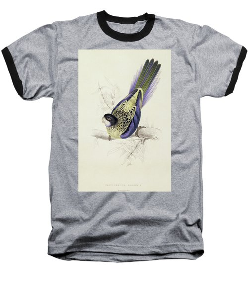 Platycercus Brownii, Or Browns Parakeet Baseball T-Shirt by Edward Lear