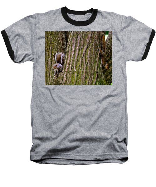 Playful Squirrels  Baseball T-Shirt
