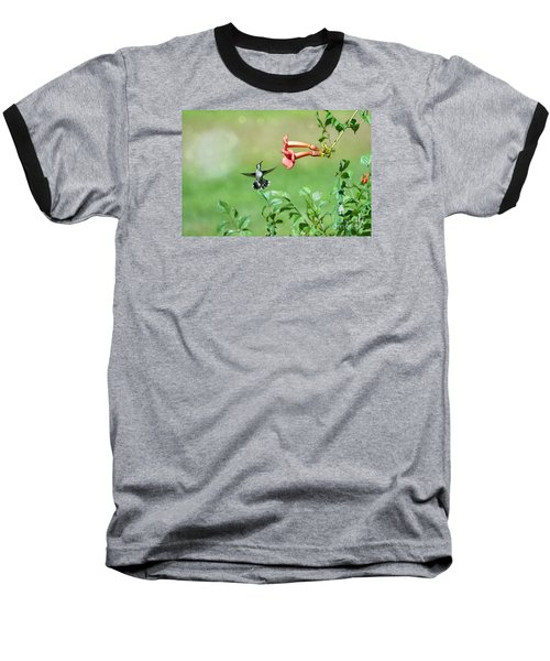 Baseball T-Shirt featuring the photograph Playing Around by Lila Fisher-Wenzel