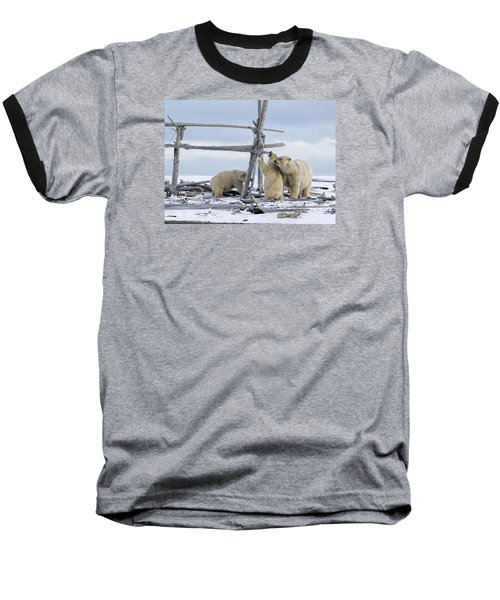 Playtime In The Arctic Baseball T-Shirt