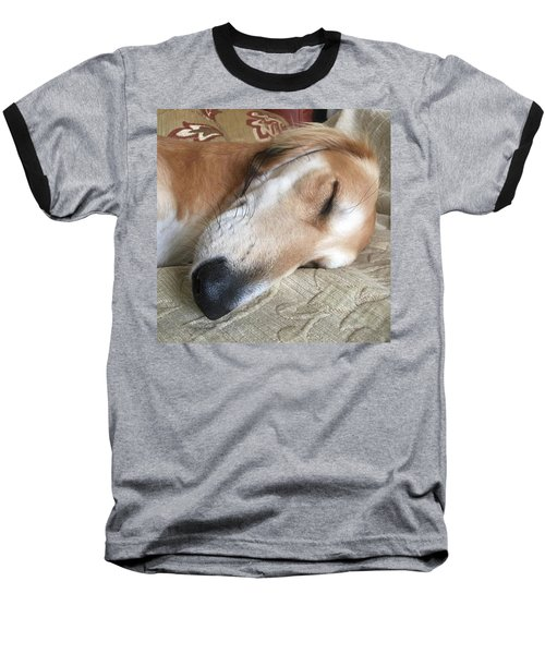 Please Be Quiet. Saluki Baseball T-Shirt