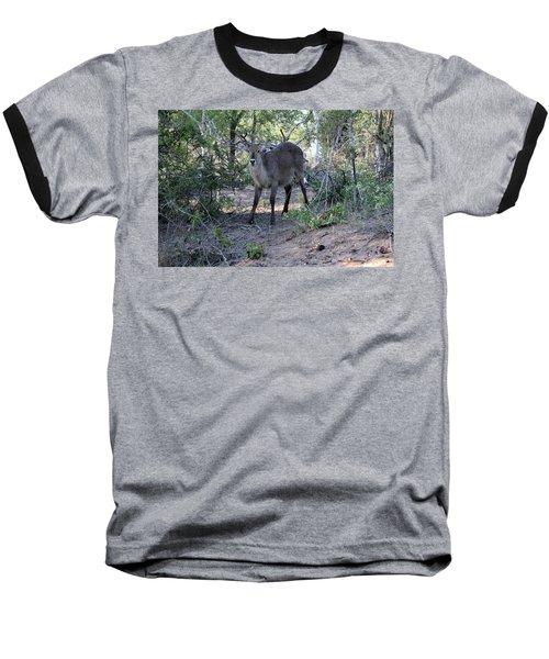 Please Don't Hurt Me Baseball T-Shirt