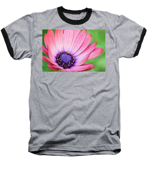 Pleasing Petals Baseball T-Shirt