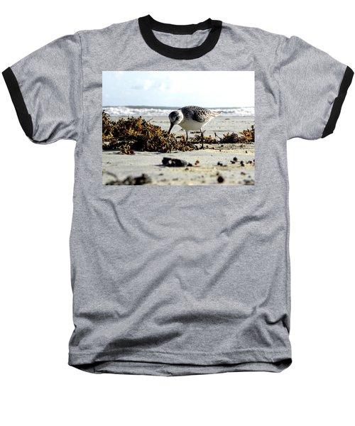 Plover On Daytona Beach Baseball T-Shirt by Chris Mercer