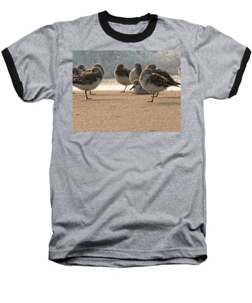 Plovers In The Morning Sunlight Baseball T-Shirt