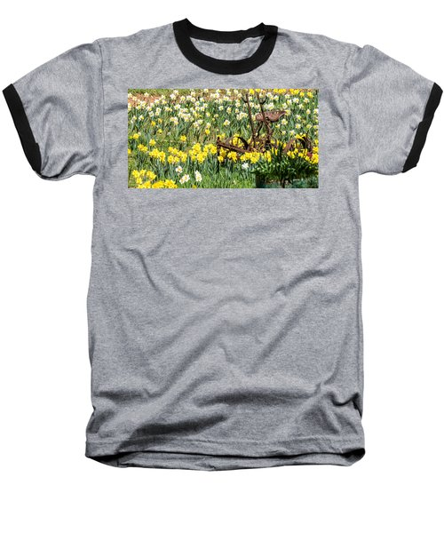 Plow In Field Of Daffodils Baseball T-Shirt