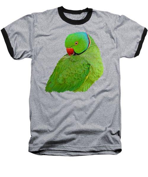 Plucking My Feathers Baseball T-Shirt by Pamela Walton
