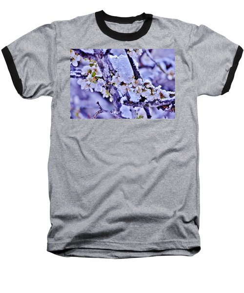 Plum Blossoms In Snow Baseball T-Shirt