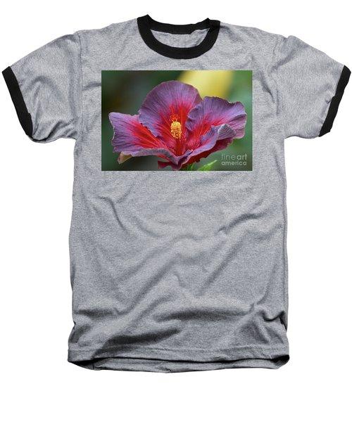 Plum Wonderful Baseball T-Shirt