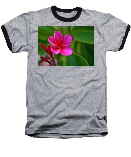 Plumeria - Royal Hawaiian Baseball T-Shirt