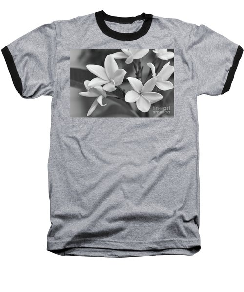 Plumeria Flowers Baseball T-Shirt by Olga Hamilton