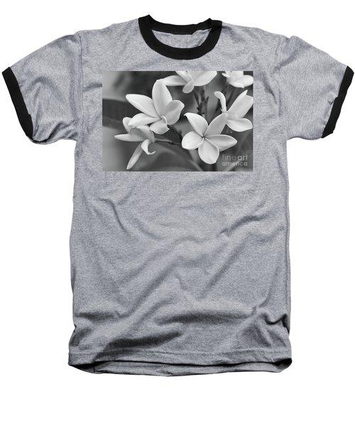 Plumeria Flowers Baseball T-Shirt
