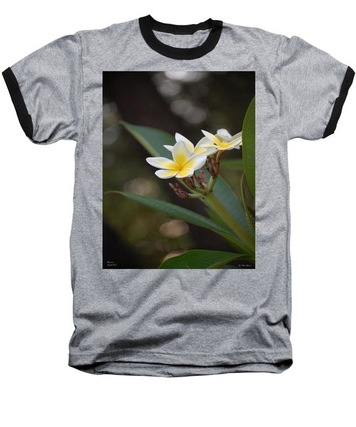 Plumeria II Baseball T-Shirt by Robert Meanor