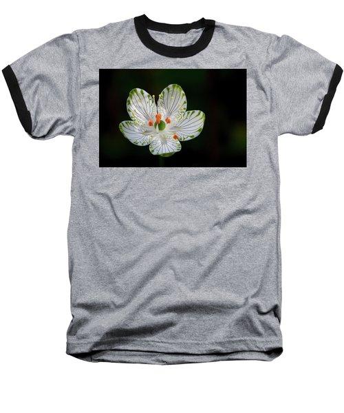 Pocosin Manifest #2 Baseball T-Shirt
