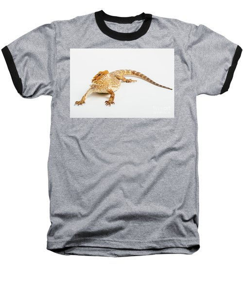 Pogona Isolated Baseball T-Shirt