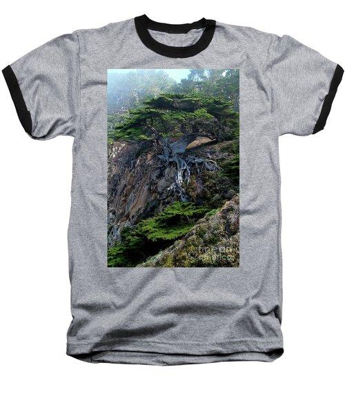 Point Lobos Veteran Cypress Tree Baseball T-Shirt