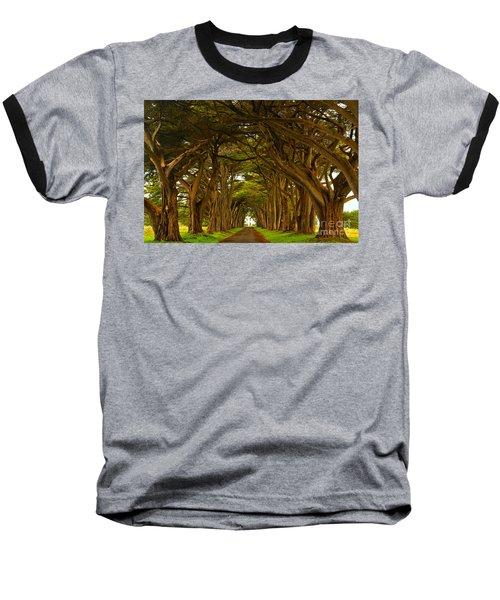 Point Reyes Cypress Tunnel Baseball T-Shirt