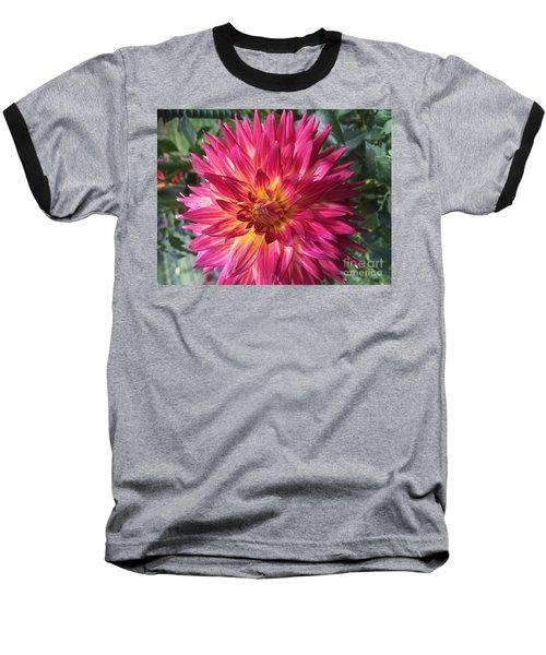 Pointed Dahlia Baseball T-Shirt