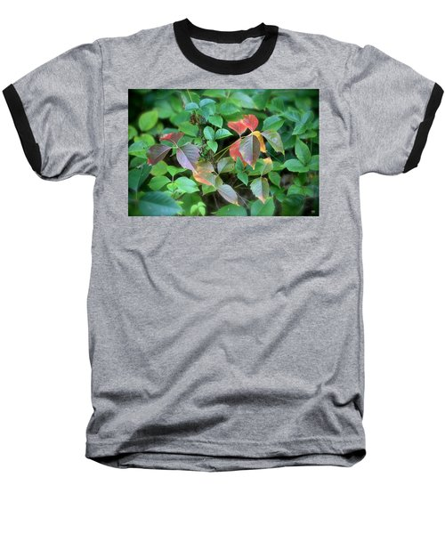 Poison Ivy In August Baseball T-Shirt