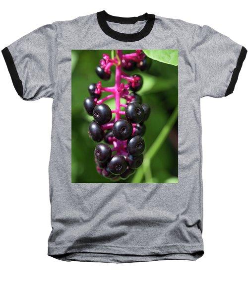 Pokeweed Cluster Baseball T-Shirt