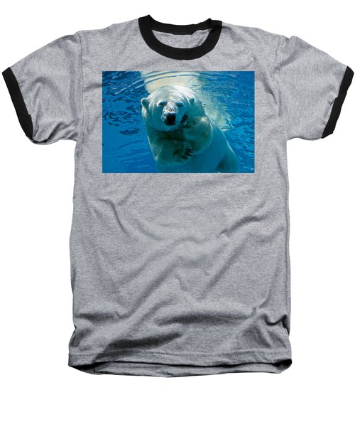 Polar Bear Contemplating Dinner Baseball T-Shirt by John Haldane
