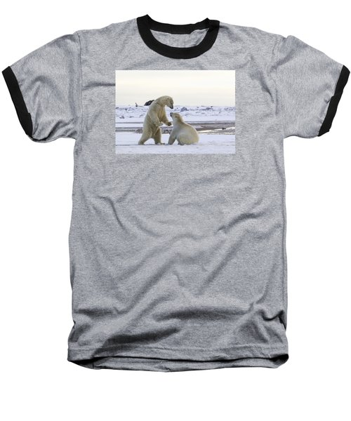 Polar Bear Play-fighting Baseball T-Shirt