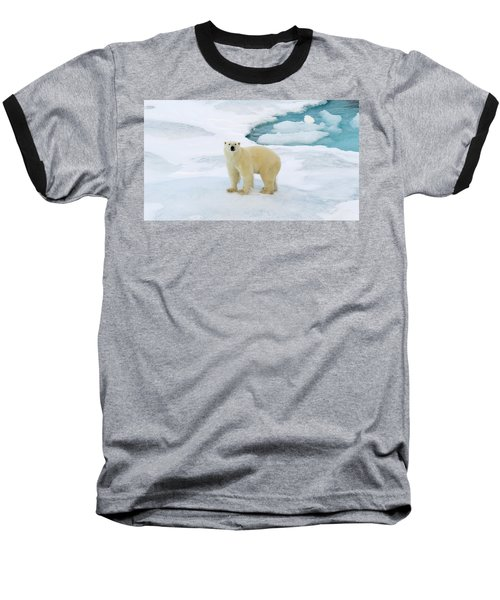 Polar Gaze Baseball T-Shirt
