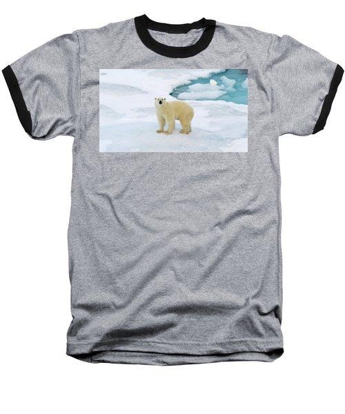 Polar Gaze Baseball T-Shirt