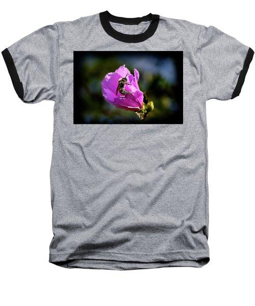Pollen Clad Baseball T-Shirt