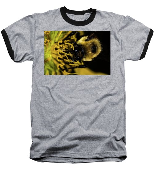 Baseball T-Shirt featuring the photograph Pollen Collector 2 by Jay Stockhaus