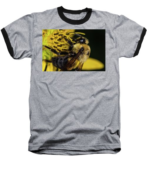 Baseball T-Shirt featuring the photograph Pollen Collector  by Jay Stockhaus