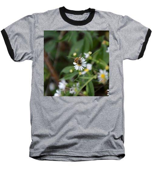 Pollinatin' Baseball T-Shirt