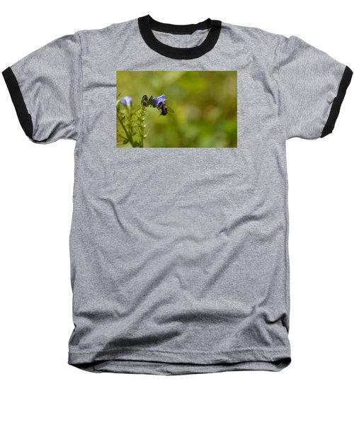 Pollinating  Bee  Baseball T-Shirt by Lyle Crump