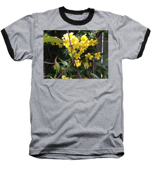 Pollination Baseball T-Shirt