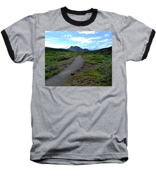 Polychrome Pass Trail, Denali Baseball T-Shirt by Zawhaus Photography